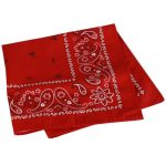 Exofficio Paisley Bandana   – Red