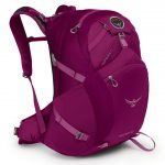 Osprey Womens Skimmer 30 Hiking Pack – Purple